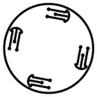 Line Diagram - FFP Series-Flange